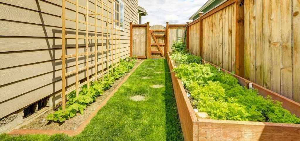 Raised Bed along with Fence
