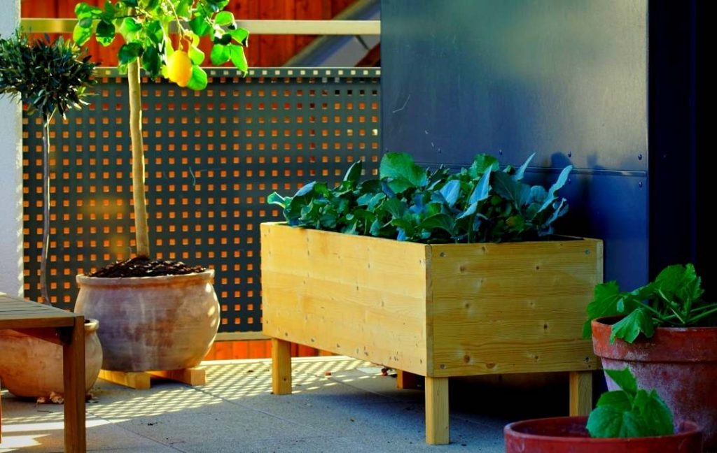 Elevated Garden Bed With Legs, How Do You Make An Elevated Garden Bed With Legs